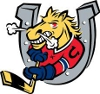 Barrie Colts OHL